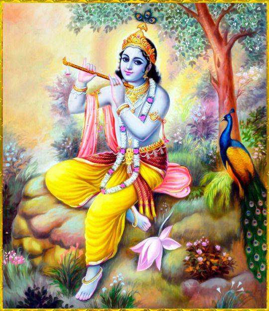 Krishna DP HD Wallpaper Lord Krishna Bhagwan