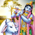 Lord Krishna Image HD New Cute Krishna Wallpaper