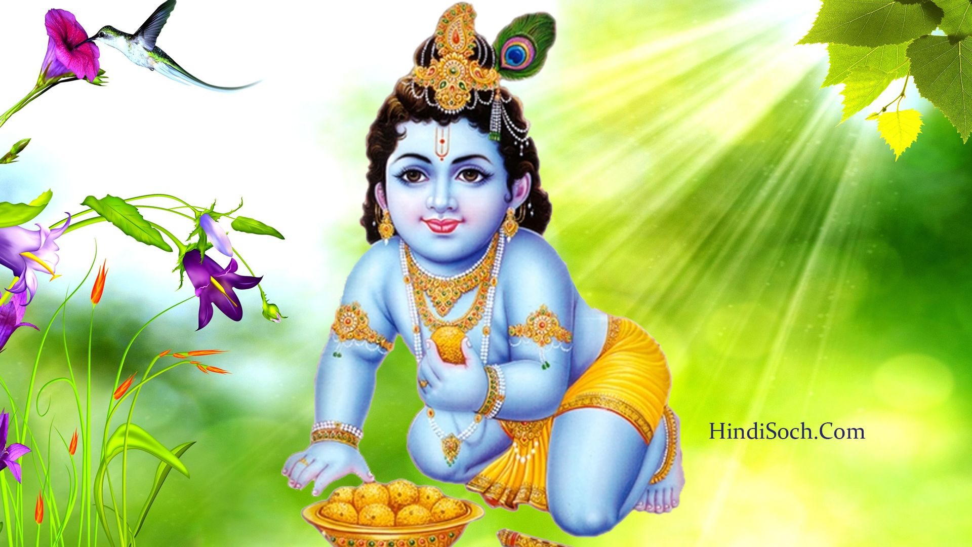 Lord Shri Krishna Images