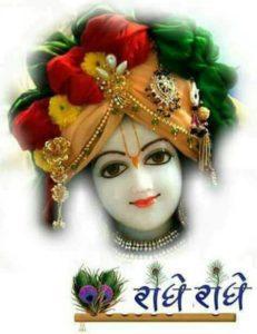 Radhe Radhe Krishna Photos