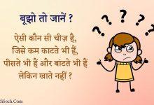Photo of Puzzle Hindi Paheli – हिंदी पहेलियाँ – Paheliyan with answer