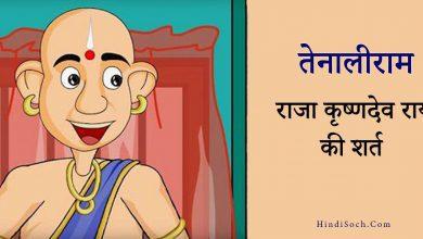 Photo of राजा की शर्त | तेनालीराम की कहानी | Tenali Rama Story in Hindi