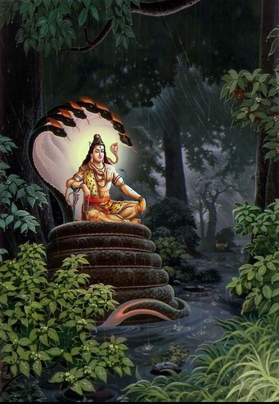 Bhagwan Shiva Shankar On Sheshnag