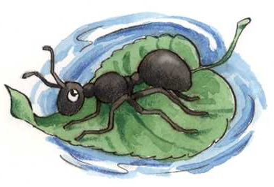 ant-and-the-leaf