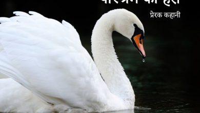 Photo of सफ़ेद हंस Story on Self Dependent in Hindi