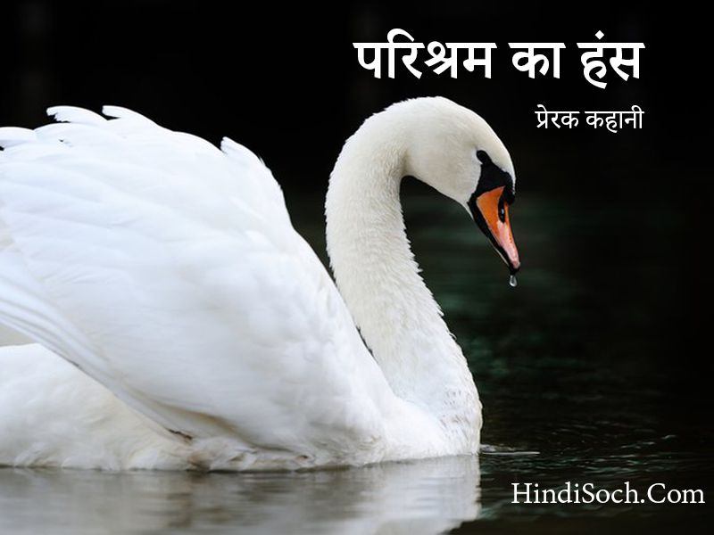 White Swan- A Self Dependent Story in Hindi