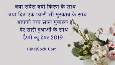 Happy New Year 2019 Shayari Wishes in Hindi