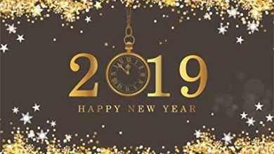 Happy New Year 2019 Speech in Hindi