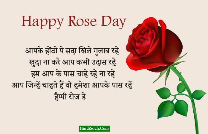 Hindi Rose Day Shayari for Whatsapp Friends