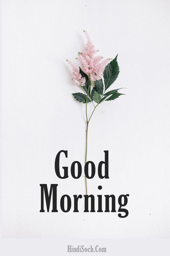 Happy Good Morning Wishes Images