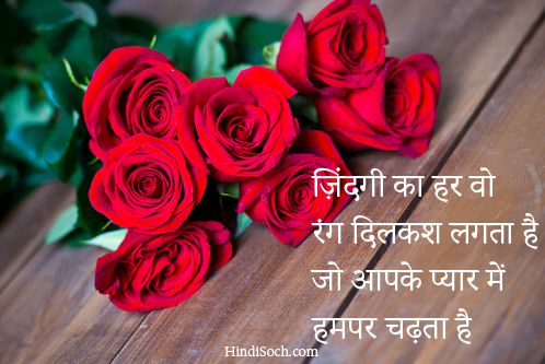 Lovely Rose Romantic Shayari