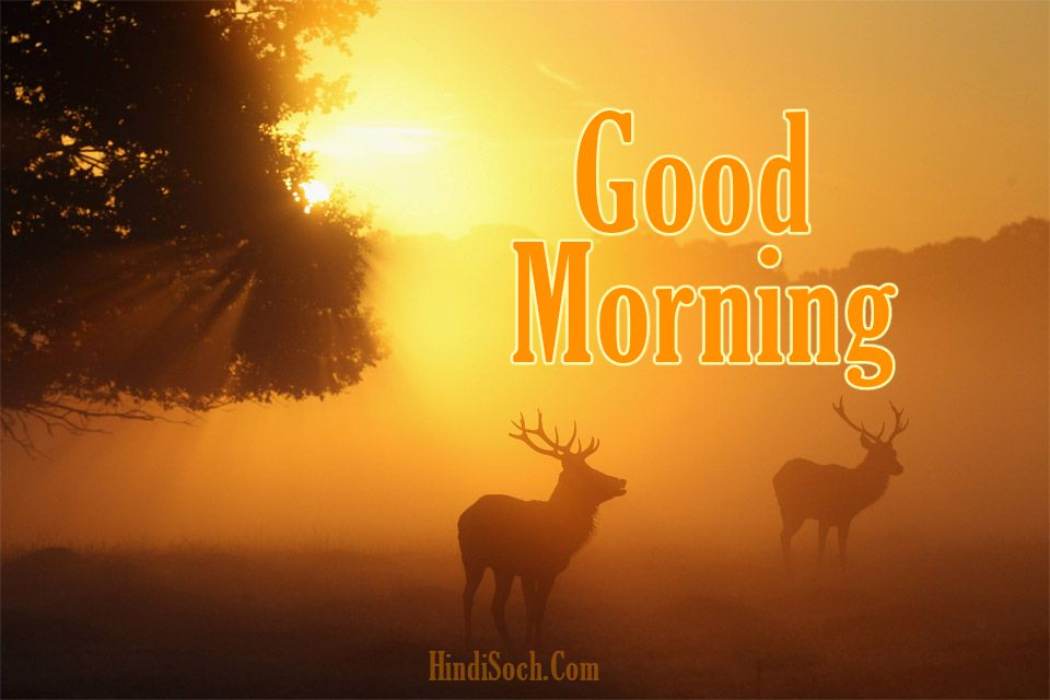 Sunrise Good Morning Wishes Images for Whatsapp