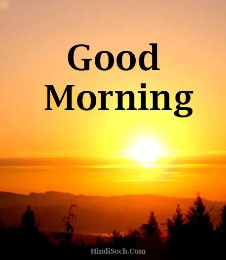 Wish You Happy Good Morning Images High Quality