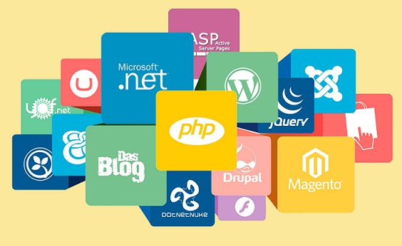 Hire Web Development Company in Delhi