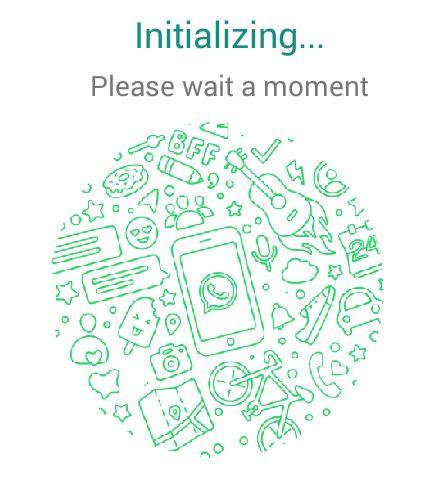 Initilizing Whatsapp Install