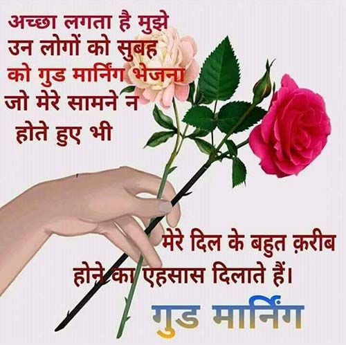 Hindi Good Morning Beautiful Flower Image