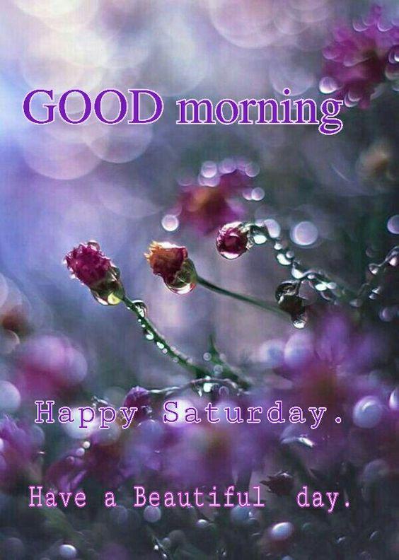 Beautiful Good Morning Saturday hd Image