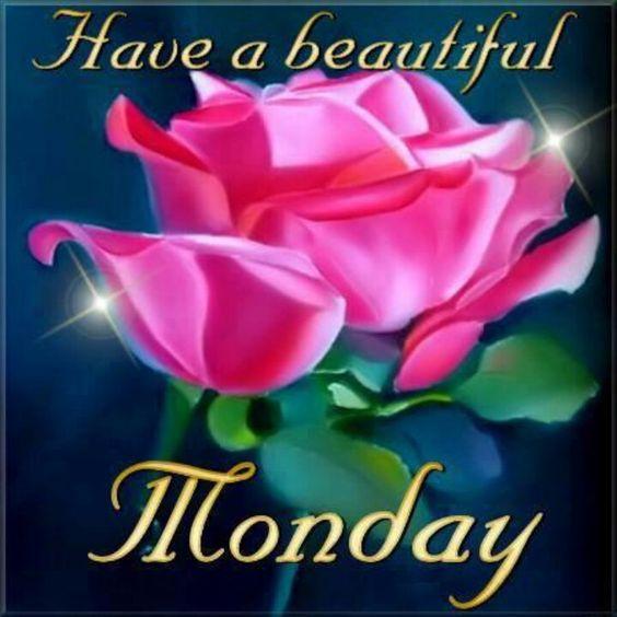 Beautiful Monday Good Morning Image HD