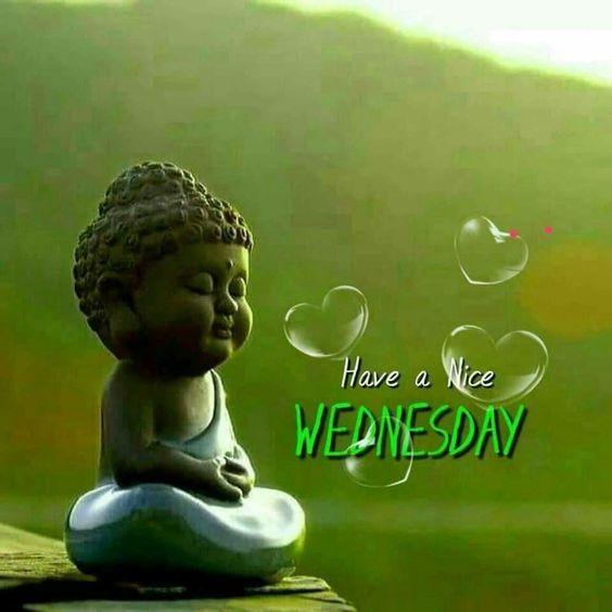 Buddha Good Morning Wednesday Image HD