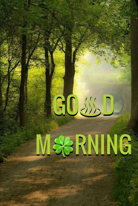 Good Morning Green Nature Image Photo