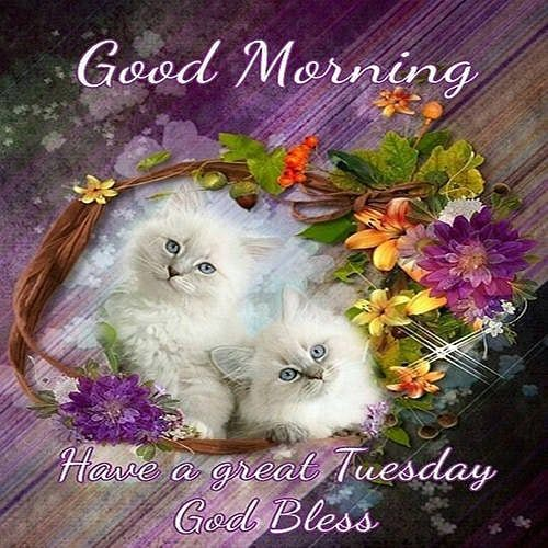 Good Morning Photo Wishes for Tuesday