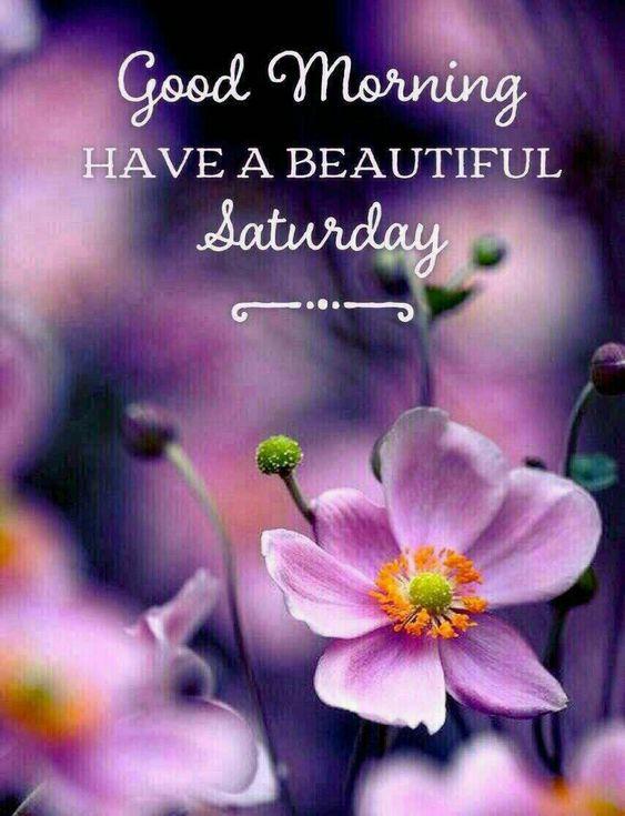 Good Morning Saturday Beautiful Flower Image