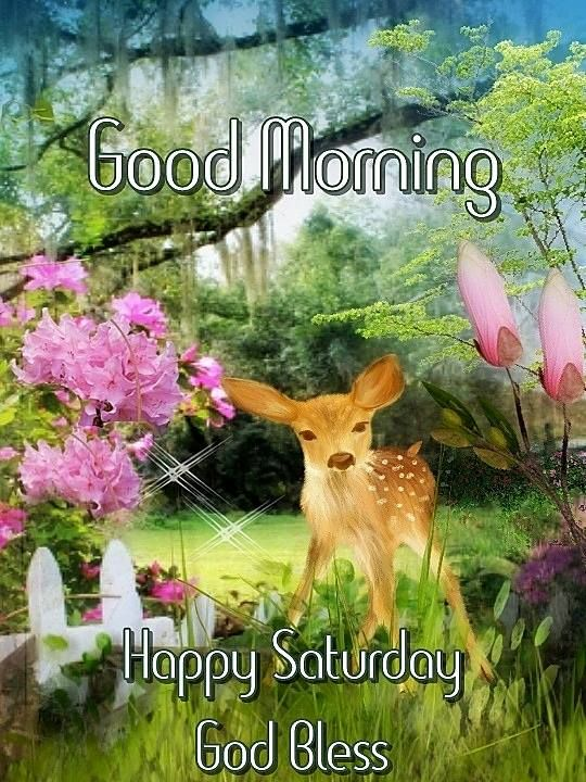 Good Morning Saturday God Bless Wallpaper