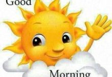 Good Morning Sunshine Funny Pic