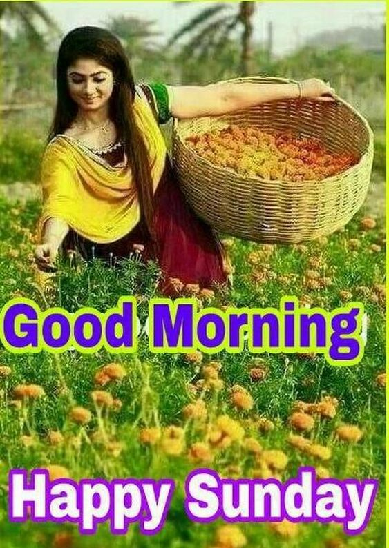 Happy Good Morning Sunday Photo Image