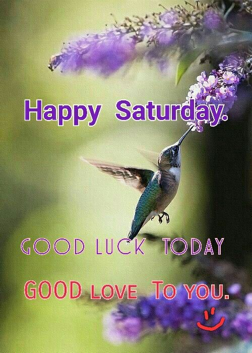 Happy Saturday Good Morning Good Luck Wishes