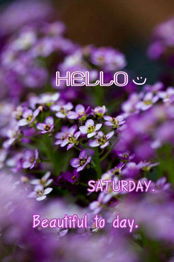 Happy Saturday Hello Good Morning Image