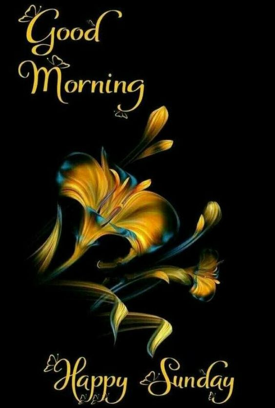 Happy Sunday Good Morning Wallpaper Pics