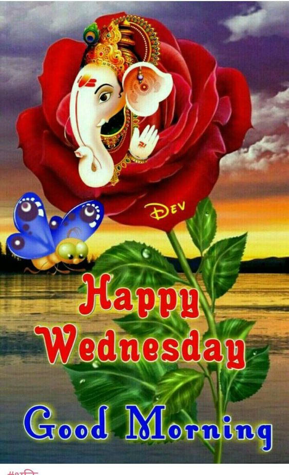Happy Wednesday Good Morning Wallpaper
