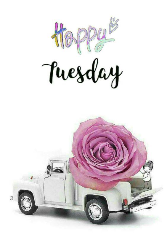 Nice Tuesday Good Morning Image to Share
