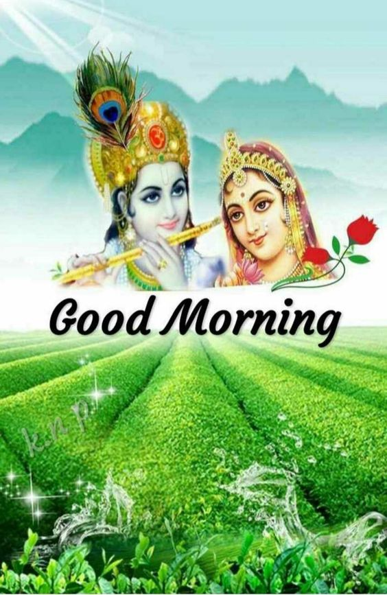 Radha Krishna Good Morning Image God Hindu