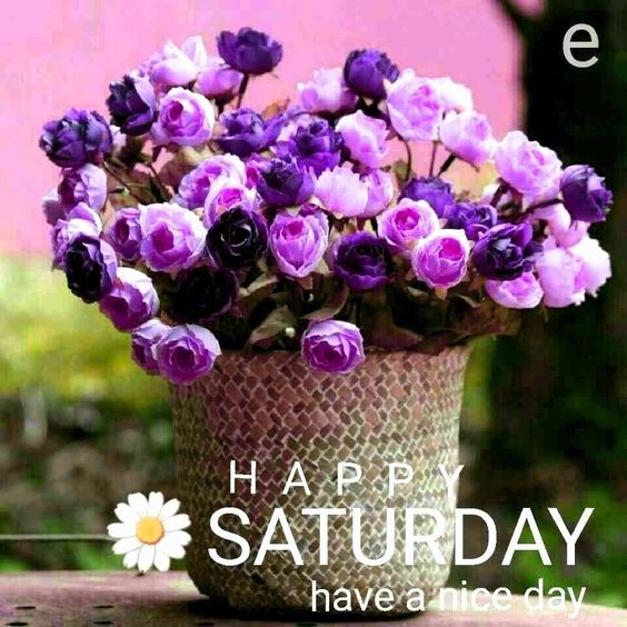 Saturday Good Morning Nice Day Image