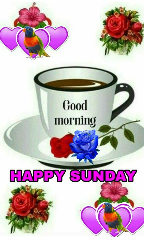Sunday Good Morning Tea Cup Image HD Photo