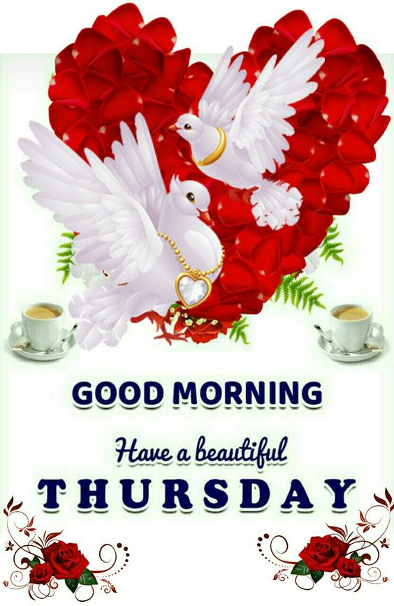 Thursday Beautiful Good Morning Pic Image