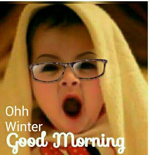 Winter Good Morning Funny Image Pic
