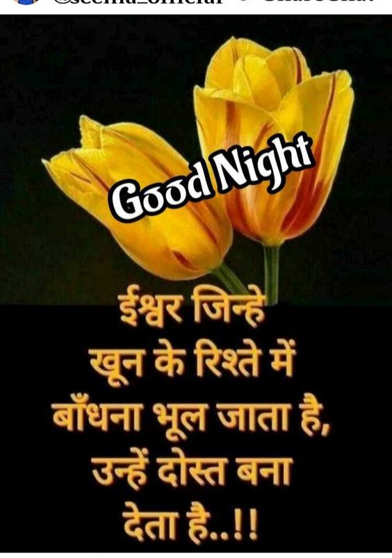 Good Night Dosti Image in Hindi