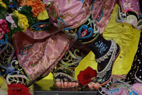 Black Foot of Lord Shri Krishna Ji
