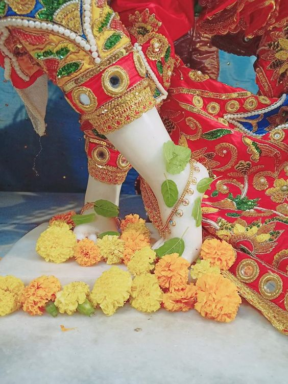 God Krishna Feet Picture with Flowers Kanha