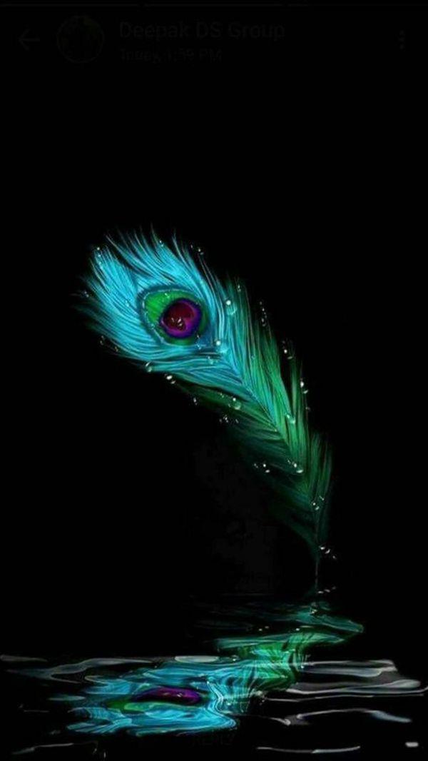 God Krishna HD Black Feather Photo