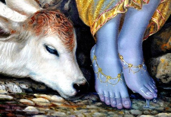 God Krishna Picture Feet in River