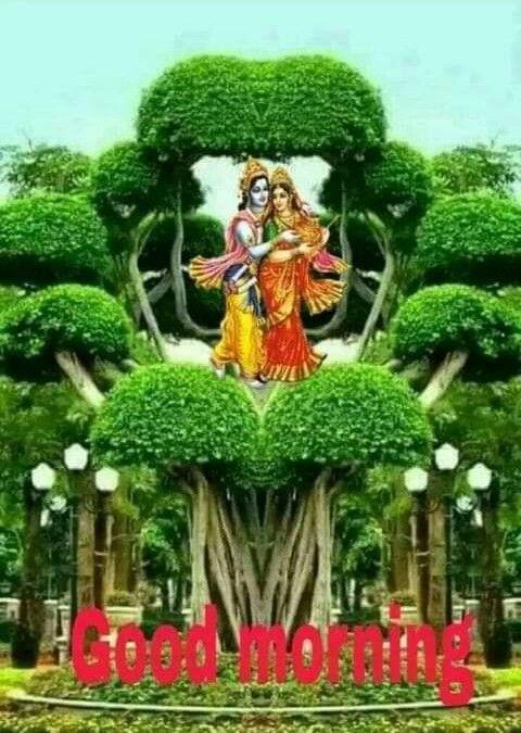 Radha Krishna Ki Jodi Good Morning Whatsapp Picture