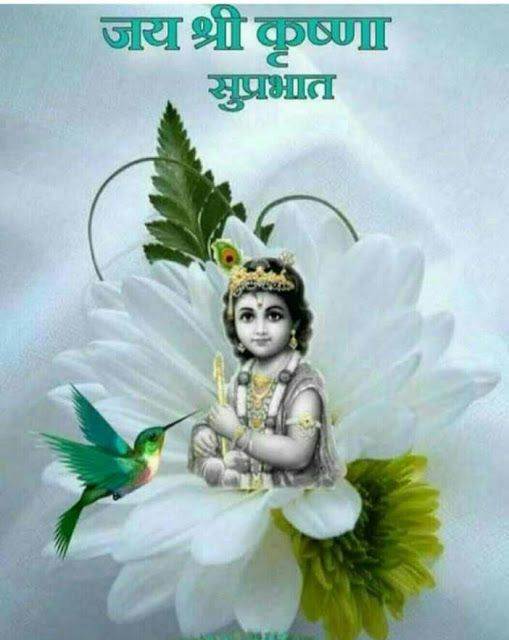 Subh Suprabhat Krishna Jai Bhagwan Krishna