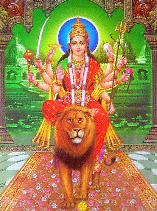 Durga Mata Ji Darbar Photo Mata on Lion